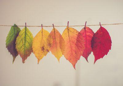 10 creatieve DIY herfstdecoratie ideeën